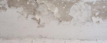Ursachen für einen feuchten Keller