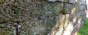 Mauerwerkstrockenlegung bei feuchten Kellers