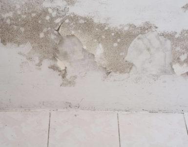 Feuchte Flecken sind die Vorboten von Schimmel im Keller durch Grundwasser